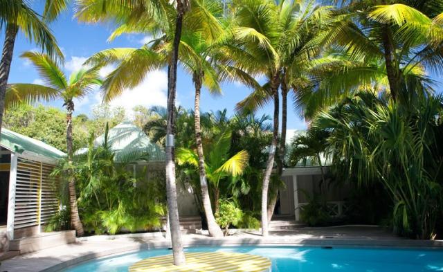 Hotel-La-Banane Pool ans Palms
